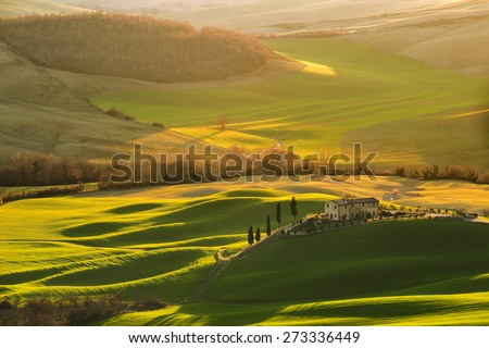 Magnificent Tuscan landscape, fields and meadows warm sun - stock photo