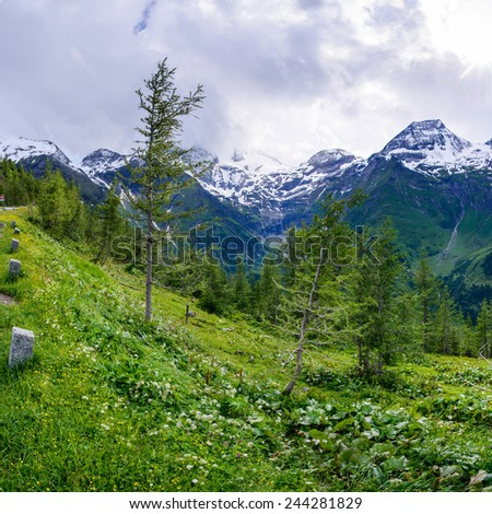 magnificent view of the Alps - stock photo