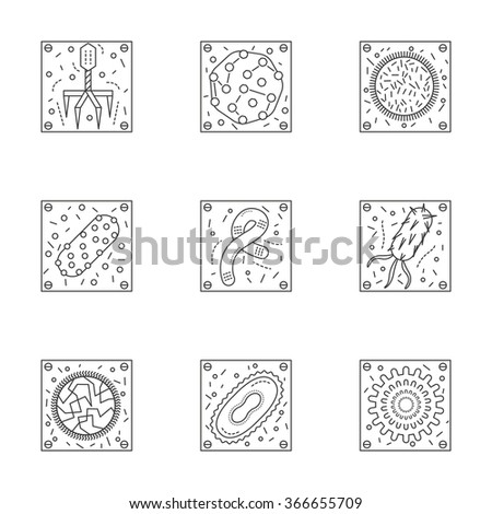 Magnified bacteria and viruses. Bacteriology and virology science. Pathogenic organisms. Set of stylish flat line icons. Elements of web design for business, website or mobile app. - stock photo