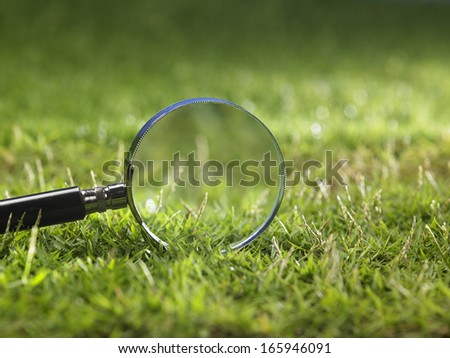 magnifying glass on the grass - stock photo