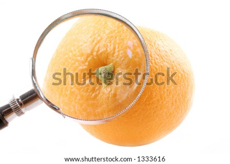 Magnifying Orange - stock photo