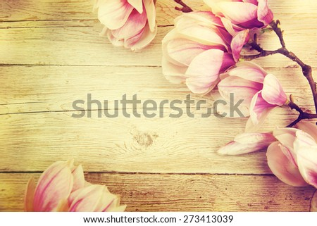 Magnolia branch on old wooden background. - stock photo