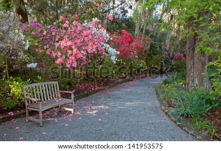 Southern Plantation Stock Images Royalty Free Images Vectors Shutterstock