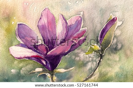 Magnolia watercolor painting illustration greeting card stock magnolia watercolor painting illustration greeting card m4hsunfo