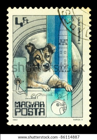 MAGYAR- CIRCA 1982: A stamp printed in magyar shows first dog Laika in space, series, circa 1982 - stock photo