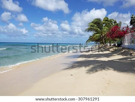 MAHOGANY BAY BEACH,BARBADOS,WEST INDIES - stock photo