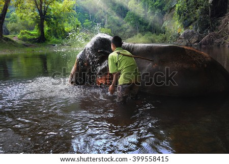 mahout enjoying splashing water with elephants in the forest at Kanchanaburi province in Thailand (with clipping path) - stock photo