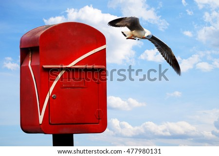 Mail box and seagull on blue sky with cloud closeup