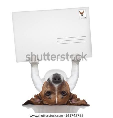 mail dog lifting a big and blank envelope - stock photo