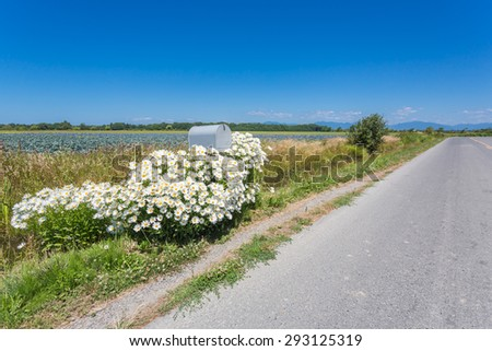 Mailbox by highway with flowers around it - stock photo