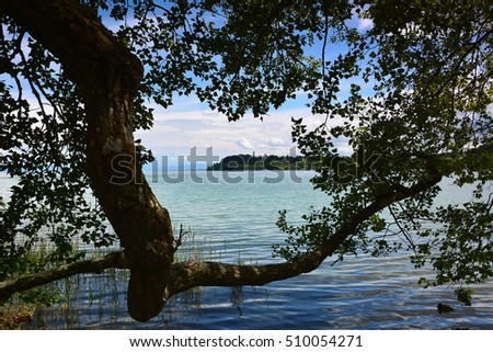 Mainau Island in Germany, Europe. View on Constance Lake