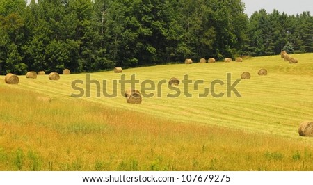 maine hayfield on the hill - stock photo