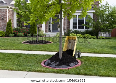 Maintaining house, quickest way to improve how your garden looks is mulching. Mulching makes big impact how your garden looks. - stock photo