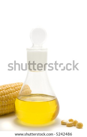 maize  corn and oil isolated