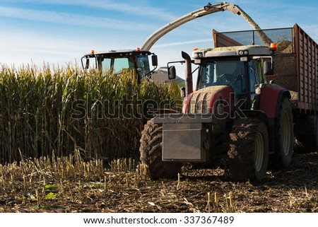Maize harvester harvests of corn