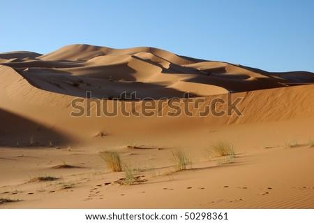 Majestic dune formation - stock photo