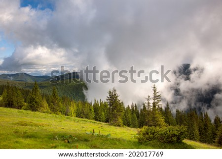 Majestic fog and clouds in the  Mountain valley landscape - green meadow and pines , Europe - stock photo