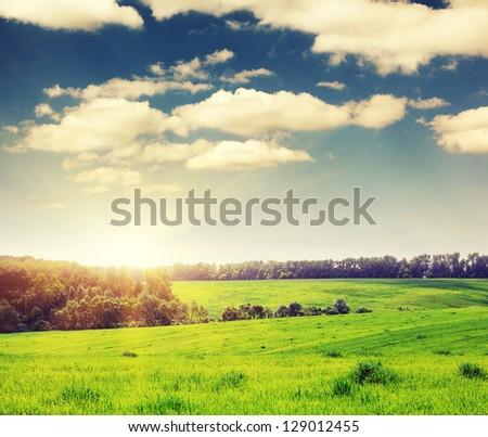 Majestic landscape in the field under daybreak with sunbeams - stock photo