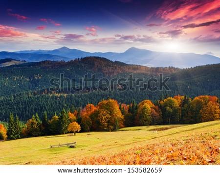 Majestic morning mountain landscape with colorful forest. Autumn leaves. Carpathian, Ukraine, Europe. Beauty world. - stock photo