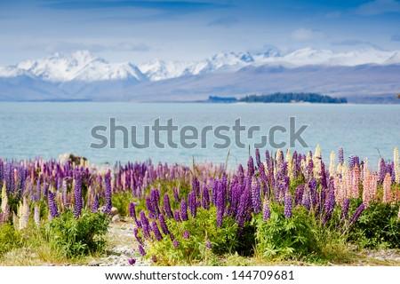 Majestic mountain lake - stock photo
