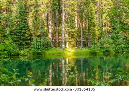 Majestic mountain lake in Canada. Lightning Lake in Manning Park in British Columbia. - stock photo