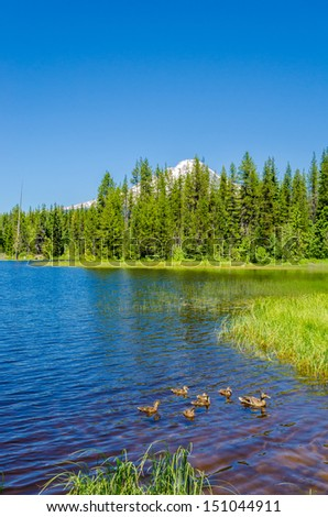Majestic mountain lake with Mount Hood background in Canada. - stock photo