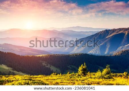 Majestic panorama of green mountains with sunny beams. Dramatic scene. National Park, Carpathian, Ukraine, Europe. Beauty world. - stock photo