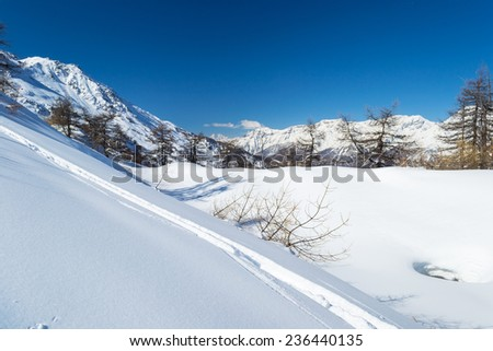 Majestic peaks in a winter scenery and candid ski slope with freeride tracks in the foreground. Frais ski resort, Piedmont, italian Alps. - stock photo