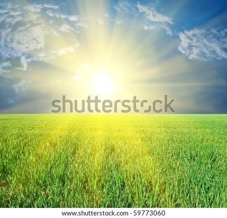 majestic sun rising among a green fields - stock photo