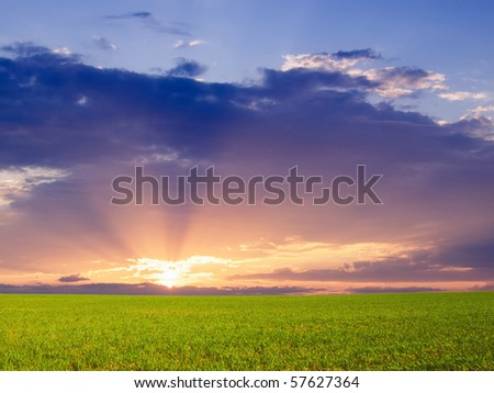 Majestic sunset over green field - stock photo