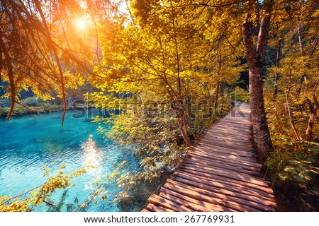 Majestic view on turquoise water and sunny beams in the Plitvice Lakes National Park. Wood glowing by sunlight. Croatia. Europe. Dramatic unusual scene. Beauty world. Retro and vintage toning effect. - stock photo