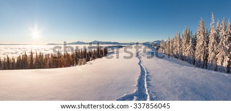 Majestic winter landscape glowing by sunlight in the morning. Clear blue sky. Dramatic and picturesque wintry scene. Location  Carpathian, Ukraine, Europe. Beauty world.  - stock photo