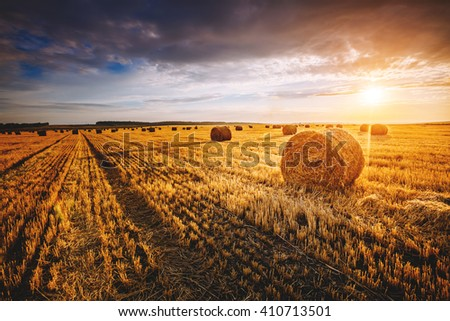Majestic yellow field with round hay bales at twilight glowing by sunlight. Dramatic and picturesque morning scene. Location place Ukraine, Europe. Beauty world. Instagram toning effect. - stock photo