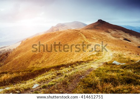 Majestic yellow hills glowing by sunlight a day. Dramatic scene and picturesque picture. Location place Carpathian, Ukraine, Europe. Beauty world. Soft filter, vintage style. Instagram toning effect. - stock photo