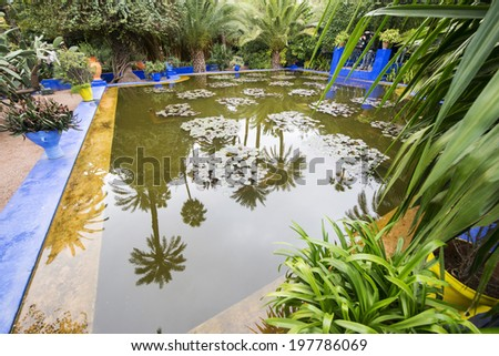 MAJORELLE GARDEN, MARRAKECH, MOROCCO, MAY 11, 2014. A pool full of water lilies in the garden of the fashion guru Yves Saint-Laurent, in Marrakech, Morocco, on May 11th, 2014. - stock photo