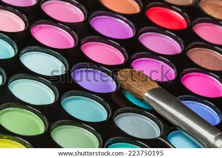 Makeup palette with professional makeup brush