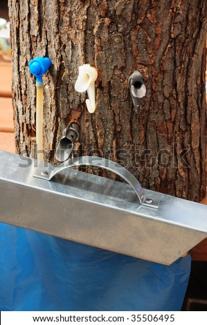 Making maple syrup - variety of taps used to harvest maple sap for syrup - stock photo