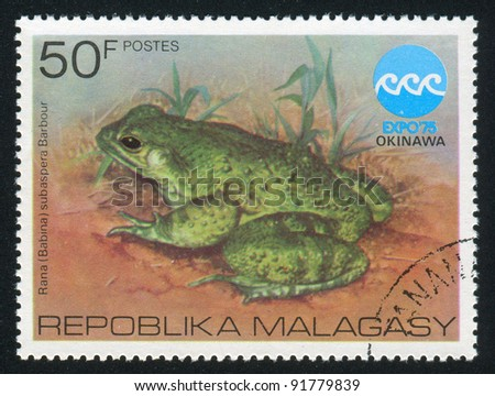 MALAGASY - CIRCA 1975: A stamp printed by Malagasy, shows Frog, circa 1975