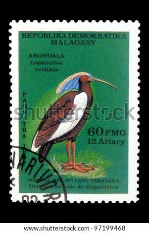 """MALAGASY REPUBLIC - CIRCA 1987: A Stamp printed in Malagasy Republic (Madagascar) shows a Madagascar Ibis with inscription """"Lophotibis cristata"""", series """"Endangered Species"""", circa 1987 - stock photo"""