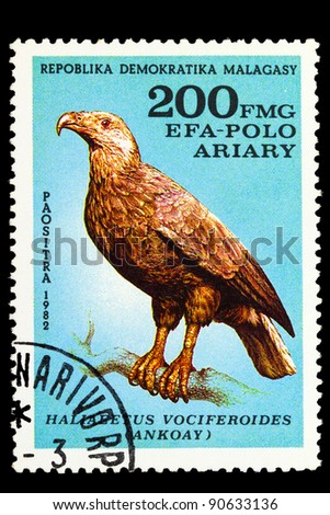 "MALAGASY REPUBLIC - CIRCA 1982: A Stamp shows image of a Eagle with the inscription ""Haliaeetus vociferoides"", series, circa 1982"