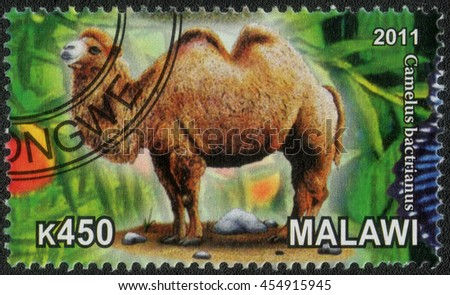 "MALAWI - CIRCA 2011: A post stamp printed in Malawi shows a series of images ""Animal world"", circa 2011 - stock photo"