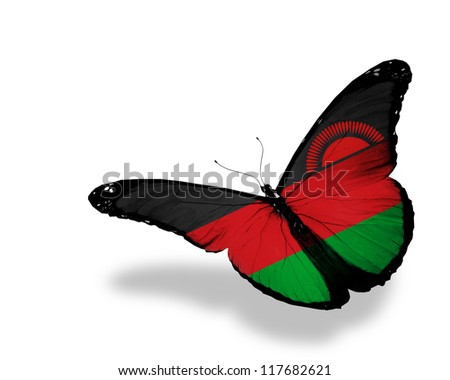 Malawi flag butterfly flying, isolated on white background - stock photo