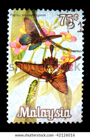MALAYSIA - CIRCA 1969: A stamp printed in Malaysia shows image of a butterfly, series, circa 1969