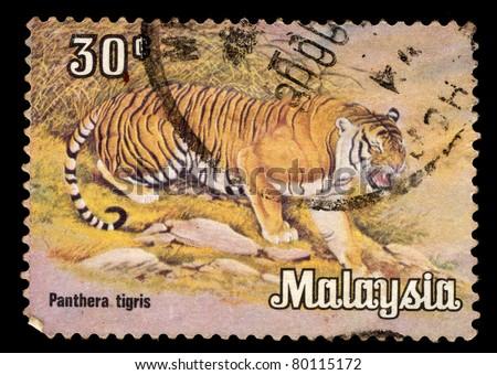 MALAYSIA - CIRCA 1987: A stamp printed in Malaysia shows Tiger - Panthers tigris, circa 1987 - stock photo