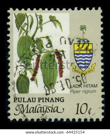 MALAYSIA-CIRCA 1988: A stamp shows image of the dedicated to the Black pepper (Piper nigrum) is a flowering vine in the family Piperaceae, which is usually dried and used as a spice, circa 1988