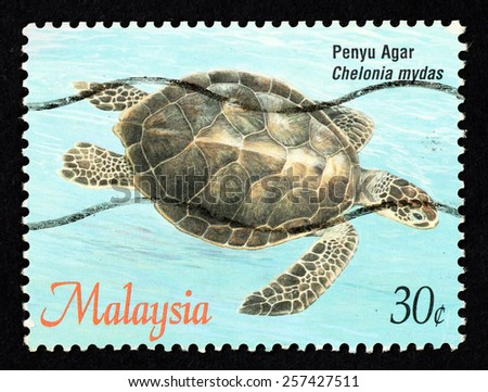 MALAYSIA - CIRCA 1995: Blue color postage stamp printed in Malaysia with image of a green sea turtle (Chelonia mydas) for the Turtle of Malaysia series. - stock photo