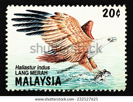 MALAYSIA - CIRCA 1989: Postage stamp printed in Malaysia with image a Brahminy Kite, scientifically known as Haliastur Indus (known as Lang Merah in Malaysia). - stock photo