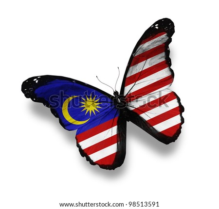 Malaysian flag butterfly, isolated on white - stock photo