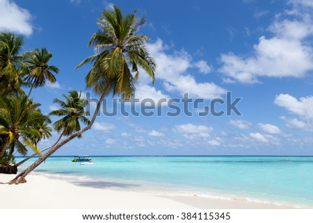 Maldives, a tropical island with palm trees and a view over the ocean - stock photo