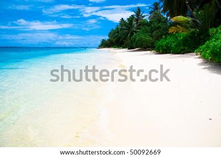 Maldivian shore - stock photo